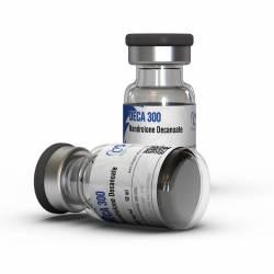 Deca 300 mg (1 vial)